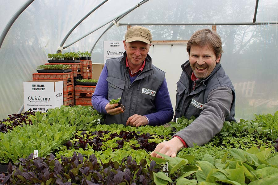 Andrew-&-Niall-Quickcrop-polytunnel